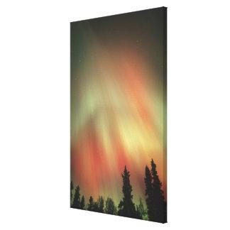 Aurora Borealis, Northern Lights, Fairbanks Canvas Print