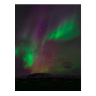 Aurora Borealis Northern Lights Trees Nature Lands Postcard