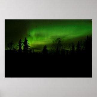 Aurora over Denali poster
