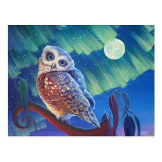 Aurora Owl Postcard