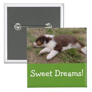 aussie puppy sleeping pin