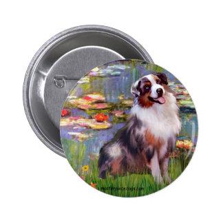 Aussie Shep 1 - Lilies 2 Pinback Buttons