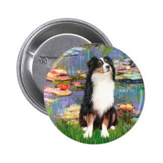 Aussie Shep 2 - Garden Buttons