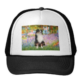 Aussie Shep 2 - Garden Mesh Hats