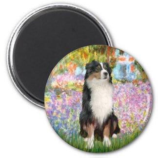 Aussie Shep 2 - Garden Magnets