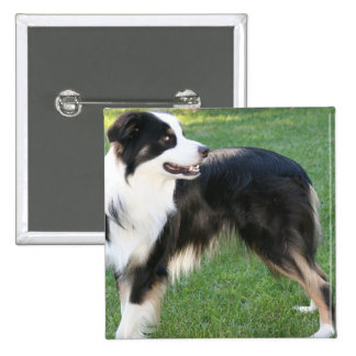 Aussie Shepherd Pin
