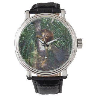 Aussie Tree Kangaroo, Mens Black Leather Watch