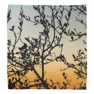 Austin Sunset in Winter Bandana