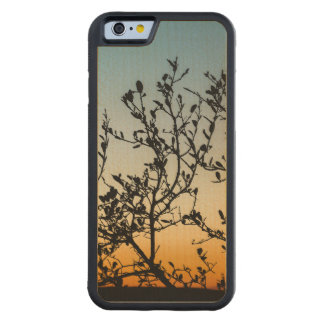 Austin Sunset in Winter Carved Maple iPhone 6 Bumper Case