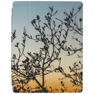 Austin Sunset in Winter iPad Cover
