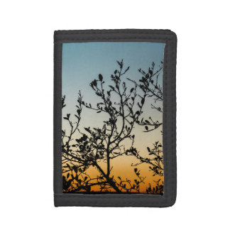 Austin Sunset in Winter Trifold Wallet