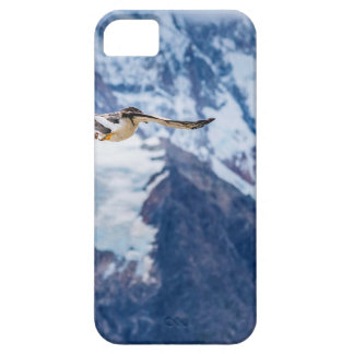 Austral Patagonian Bird Flying Case For The iPhone 5