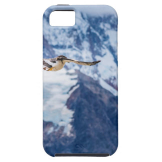 Austral Patagonian Bird Flying iPhone 5 Covers
