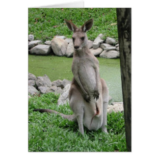 Australia Beckons Card