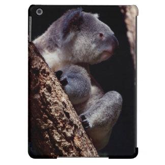 Australia, Close-Up of Koala (Phascolarctos Cover For iPad Air