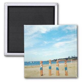 Australia Geelong Refrigerator Magnets