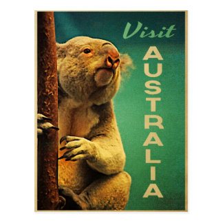 Australia Koala Postcards