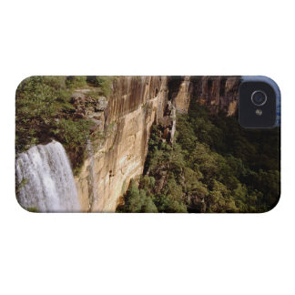 Australia, New South Wales, Fitzroy Falls. Blackberry Bold Case