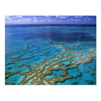 Australia - Queensland - Great Barrier Reef. 6 Postcard