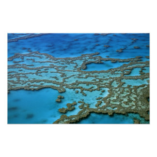 Australia - Queensland - Great Barrier Reef. Poster