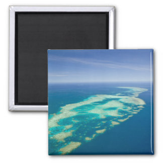 Australia, Queensland, North Coast, Cairns 2 Square Magnet
