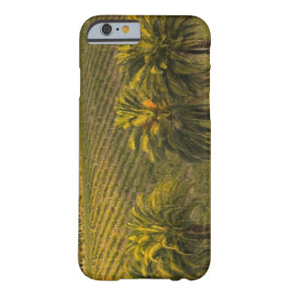 Australia, South Australia, Barossa Valley, Barely There iPhone 6 Case