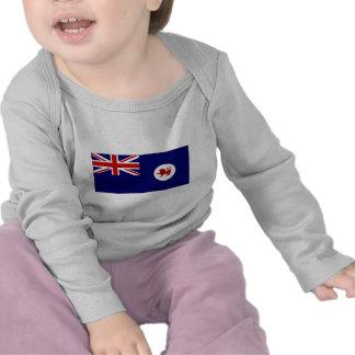 Australia Tasmania Flag Tshirts