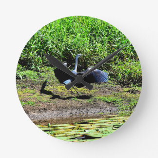 AUSTRALIAN BIRD STORK RURAL QUEENSLAND AUSTRALIA WALL CLOCKS