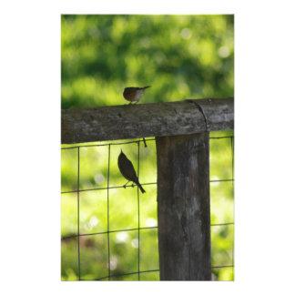 australian birds and flora custom stationery