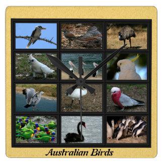 Australian Birds Wall Clocks