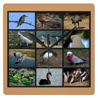 Australian Birdwatchers Collage Square Wallclocks