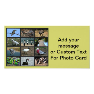 Australian Birdwatchers Collage Custom Photo Card