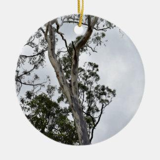AUSTRALIAN BUSH QUEENSLAND AUSTRALIA CERAMIC ORNAMENT