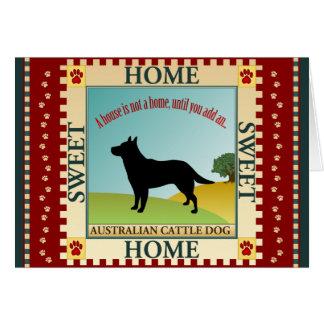Australian Cattle Dog (ACD) Note Card