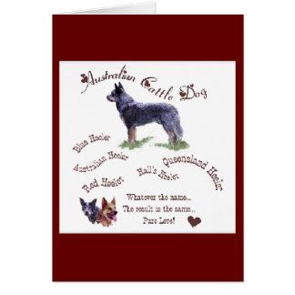 Australian Cattle Dog Gifts Card