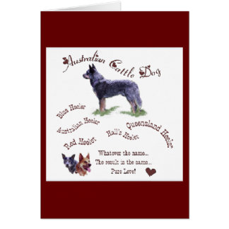 Australian Cattle Dog Gifts Note Card