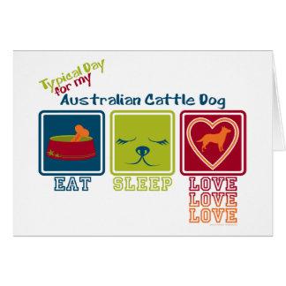 Australian Cattle Dog Note Card