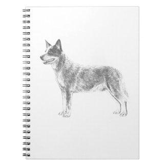 Australian Cattle Dog Notebook
