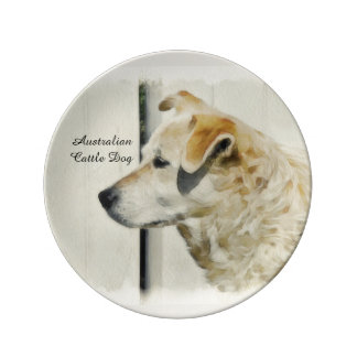 Australian Cattle Dog  Porcelain plate