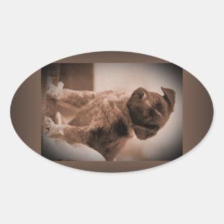 Australian Cattle Dog ~ Puppy ~ Mascot 1943 WW II Oval Sticker