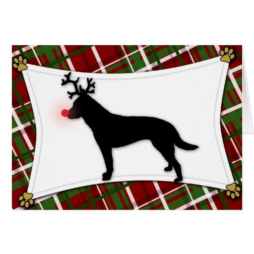 Australian Cattle Dog Reindeer Christmas Card