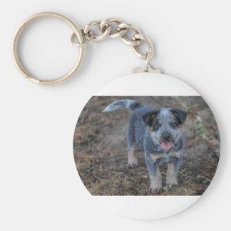 Australian Cattle Puppy Dog Key Ring