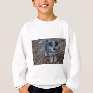 Australian Cattle Puppy Dog Sweatshirt