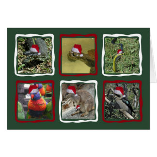 Australian Christmas Animals Greeting Card