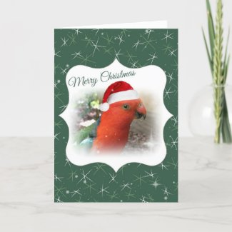 Australian Christmas Card - Native Bird - Rosella
