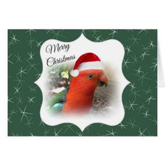 Australian Christmas Message - Native Rosella Greeting Card
