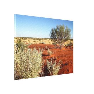 Australian desert canvas print