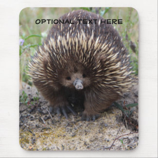 Australian Echidna Cute Animal Photo Mouse Pad