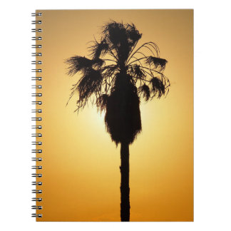 Australian Fan Palm silhouette notebook