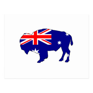 Australian Flag - Bison Postcard